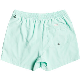 Quiksilver Everyday Volley 15 Shorts Men, beach glass